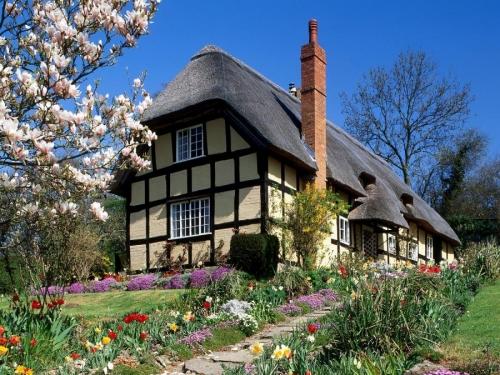 Spring Garden England