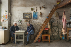 greek-pavilion-venice-art-biennale-maria-papadimitriou-taxidermy-shop-designboom-02